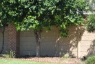 Windsor SA Barrier wall fencing 5
